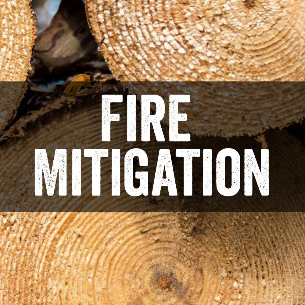 fire mitigation vail colorado
