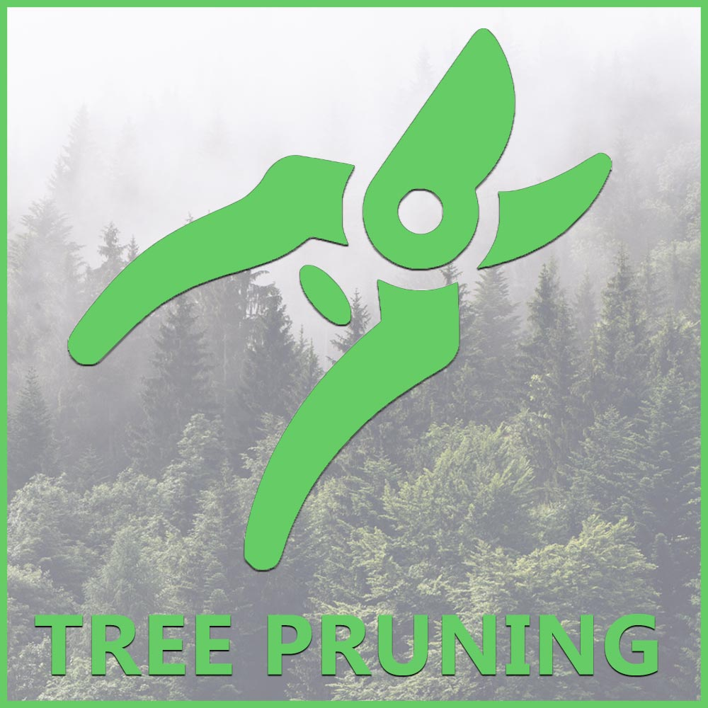 tree pruning mountain dog tree care