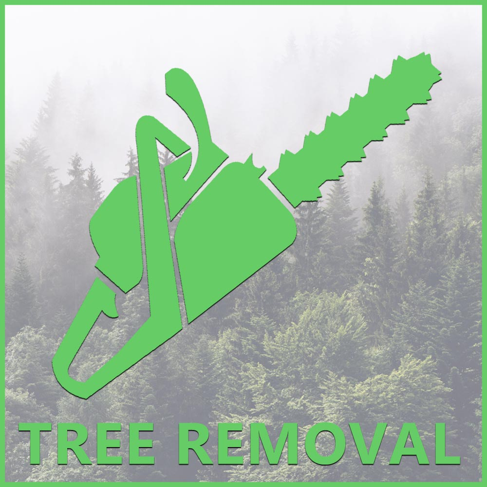 tree removal mountain dog tree care
